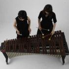 【講師】omu-tone/打楽器ユニット 『おやこでオムトントン!』 【内容】オムトンChang-Nongとわ かめーるの2人と、音楽であ そぼう! マリンバの音を聴い て、リズムに乗って、声を出 して!! オンガクを楽しもう!