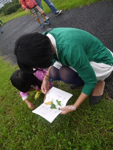 takako_image3(親子で採集)web
